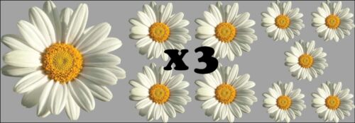 Daisy Flower Decals Car Stickers Graphics Nursery Wall Window Decorations Art