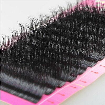 100 Real Nature Mink Eyelash Extension Korea KCC Certification Of Raw Material