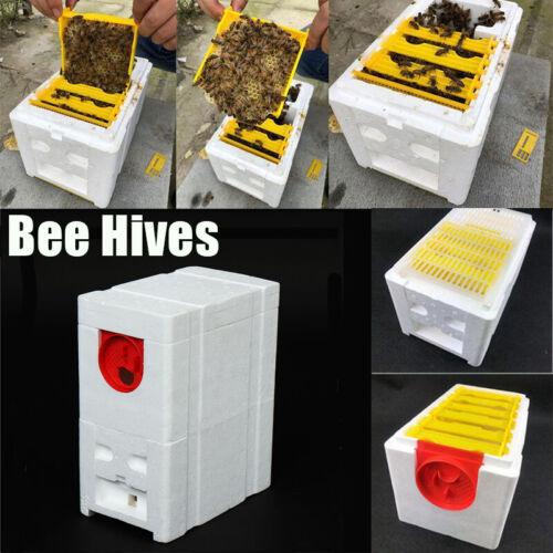 29*24*14.5 CM Harvest Bee Hives Beekeeping King Pollination Box Foam Frames Tool