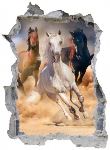 Pferd Natur Wild Sand Wandtattoo Wandsticker Wandaufkleber E0672