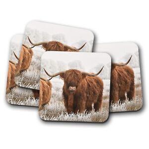 4-Set-Highland-Cow-Coaster-Cattle-Scotland-Hairy-Fluffy-Bull-Fun-Gift-14591