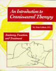 An Introduction to Craniosacral Therapy: Anatomy, Function and Treatment by Don Cohen (Paperback, 1996)