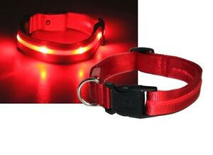 Hunde-LED-Halsband-Hunde-Leuchthalsband-Hunde-Signalhalsung-Rot-USB-Ladung