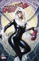 AMAZING SPIDERMAN 25 STANLEY ARTGERM LAU COMICXPOSURE COLOR VARIANT NM BLACK CAT