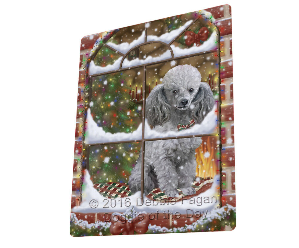 Please Come Home For Christmas Poodle Dog Sitting In Window Blanket BLNKT54165