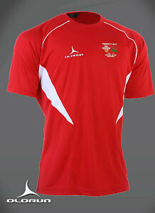 Wales Perfect Day Grand Slam Busters Welsh Rugby Flux T - Shirt Sizes Y-XXXL