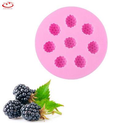 Blueberry Raspberry Silicone Fondant Mold Cake Decor Chocolate Sugarcraft Mould
