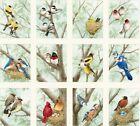 Beautiful Birds Panel from Elizabeth's Studios (12 pictures)