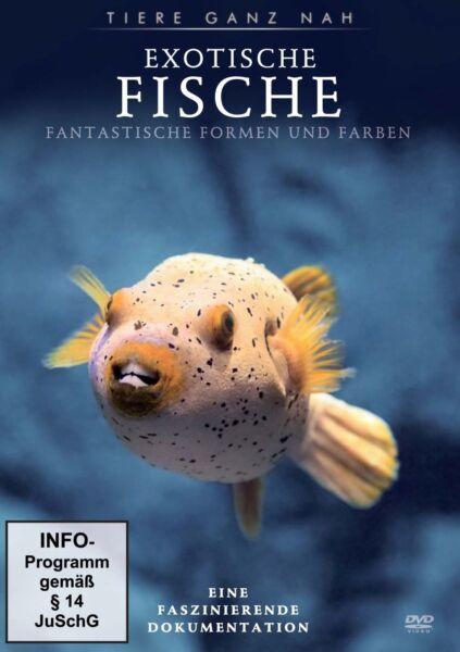 Fische Günstig Kaufen