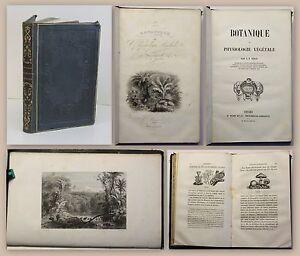Jehan-Botanique-et-Physiologie-Vegetale-1847-Pflanzenkunde-Biologie-Botanik-xz