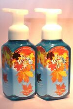 Bath & Body Works Gentle Foaming Hand Soap Crisp Morning Air 2016