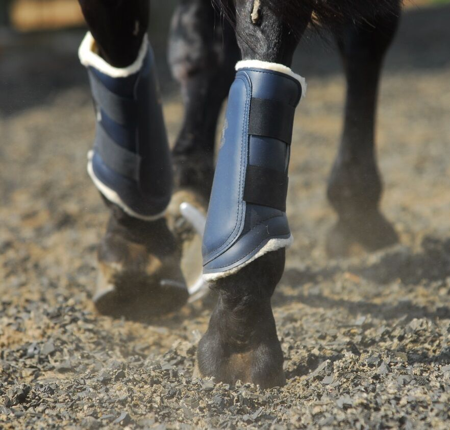 Clarendon  PRO WORK Brushing Splint Exercise Flatwork Training Jump Horse Boots  clearance up to 70%