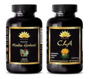 Weight Loss Protein Powder For Women Hoodia Gordonii Cla Combo