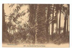CPA-AFRIQUE-AOF-LA-RECOLTE-DU-VIN-DE-PALME