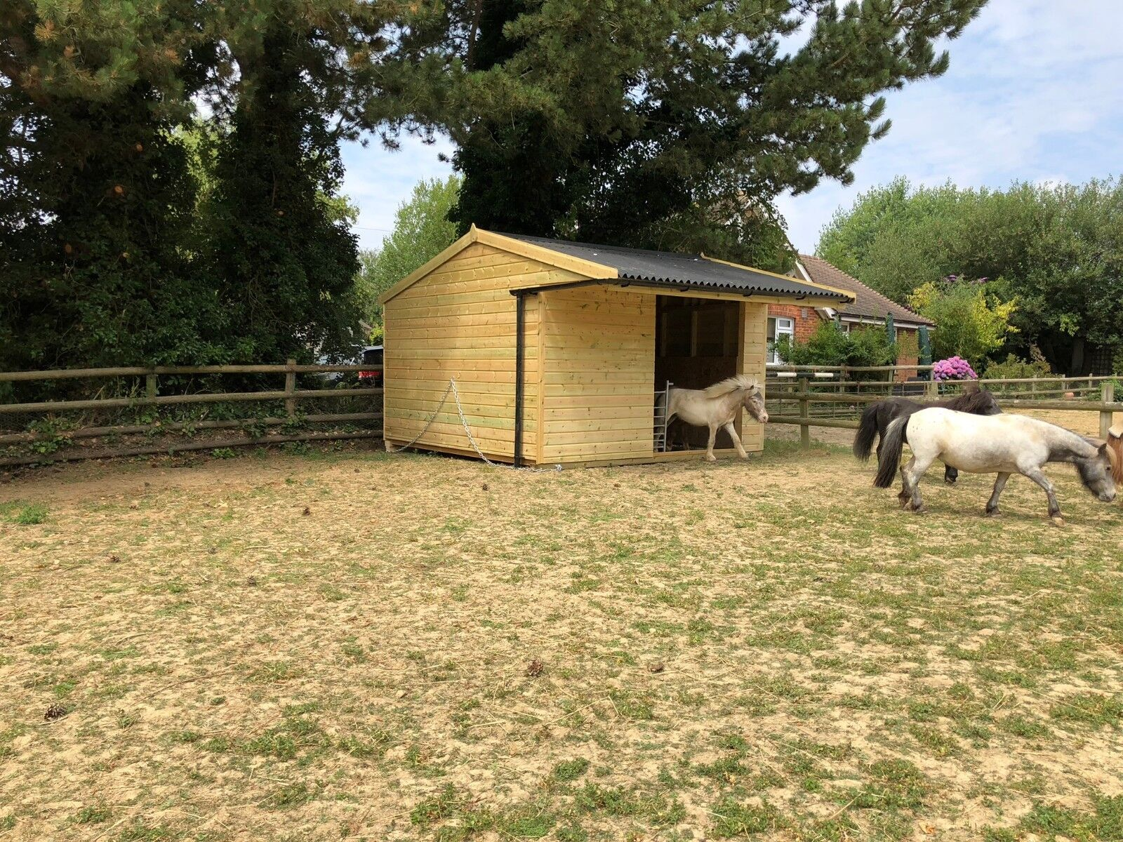 Field Shelter for horses and animals 12x12. Pressure Treated + Timber Skids