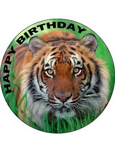 Incredible 7 5 Tiger Edible Icing Birthday Cake Topper Ebay Funny Birthday Cards Online Alyptdamsfinfo