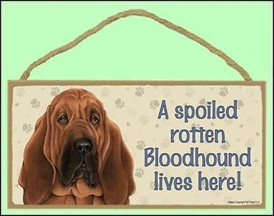 "A Spoiled Rotten Doberman black Lives Here 10/"" x  5/"" Dog Sign"