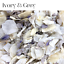 Biodegradable-WEDDING-CONFETTI-IVORY-Dried-FLUTTER-FALL-Real-Throwing-Petals thumbnail 17