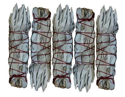 MINI 5 Pack White Sage Wands/Smudge Sticks - Lot of 5 Mini Wands SK WHITE SAGE