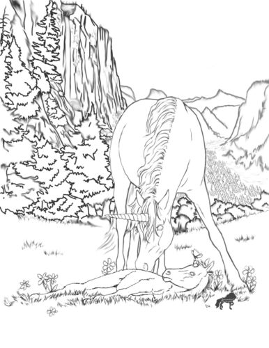 Mystical Horses Vol #2 Poster Coloring Book Samantha Covington UNICORNS PEGASUS