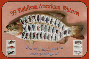 Fish-From-American-Waters-Letrero-de-Metal-Arqueado-Cartel-Lata-20-X-30CM
