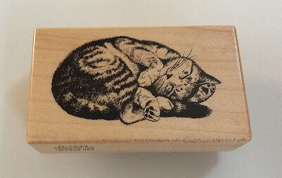 """Cat Sleeping Rubber Stamp PSX  D-1248 Kitten 2.5 x 1.5""""  Rare Petaluma 1994"""