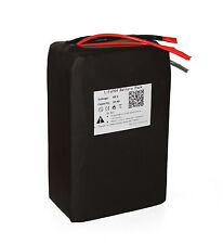 48V 20AH LiFePO4 Battery Pack Power for 1000W Ebike Motor with Charger BMS