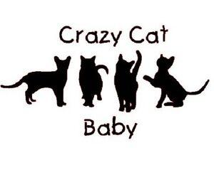 Sizes up to 24 months! Crazy Cat Baby Onesie
