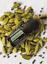 doTERRA-Sample-Size-oils-20-40-drops-choose-your-oil thumbnail 9