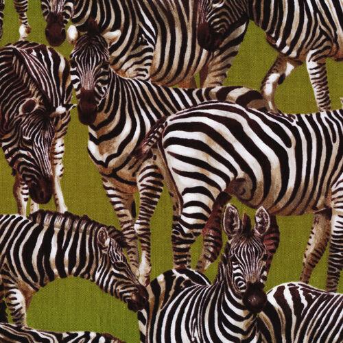 Cuarto gordo Zebra Maravillas Algodón Colchas De Retazos De Tela 50cm X 55 Cm