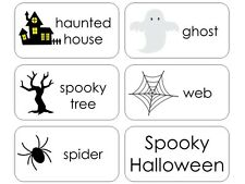 11 Laminated Halloween Holiday Flashcards.  Reading and vocabulary activity for