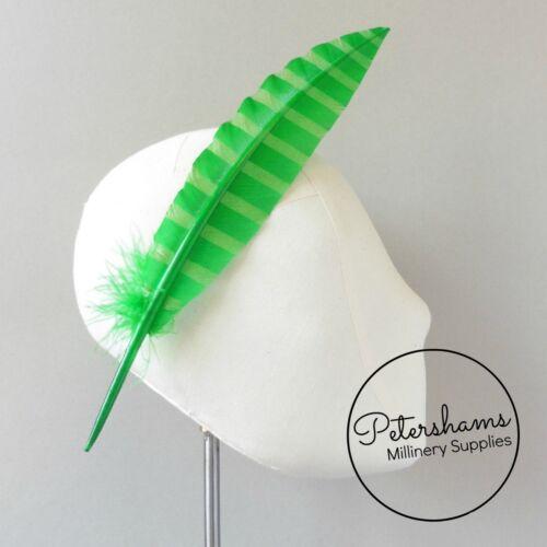 Patrón de rayas Imitación Ganso pluma pluma de plumas para sombreros SINGLE