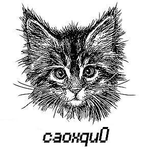 caoxqu0
