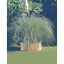 miniatura 1 - Rollborder recinto mt 2 in legno di pino per recintare aiuole tonde o curvilinee