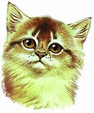 Embroidered Sweatshirt - Red Somali Kitten BT2522  Sizes S - XXL