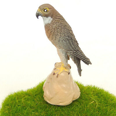 Eagle Bird Lifelike Fairy Garden Terrarium Dollhouse Decor Figurine Toy n8