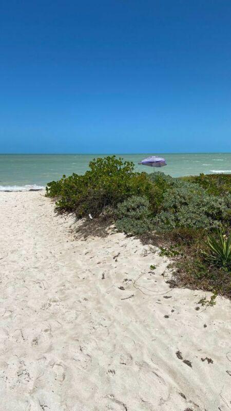 Venta terreno en la playa de San Benito Mérida Yucatan