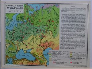 1961-SOVIET-MAP-EUROPEAN-RUSSIA-NATURAL-VEGETATION-amp-TIMBER-INDUSTRY-SAW-MILLS