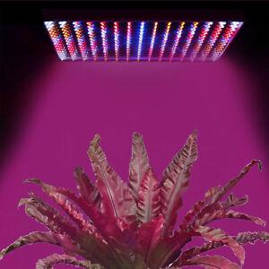 SûR 225/200 Del Full Spectrum Plante Croissance Lampe Veg Lumière Intérieure Pour Hydroponique Plante-afficher Le Titre D'origine