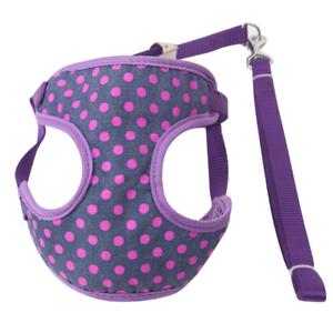 (ch009) Cat Chaton Réglable Mesh Harness & Lead Set, Violet Dots Différentes Tailles-afficher Le Titre D'origine