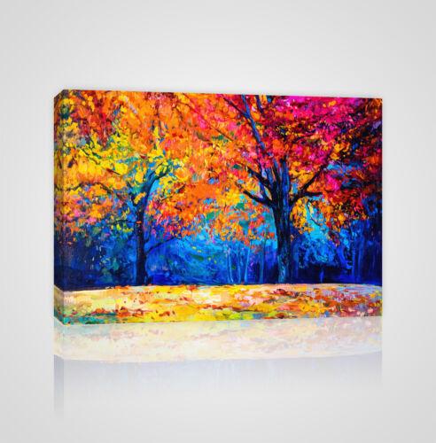 YC21 Colorful Autumn Trees Framed Canvas Print