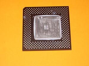 Processeur-INTEL-Celeron-466-fv524rx466