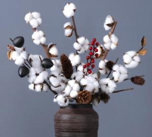 Natural Dried Cotton Flower Stem Floral Branch Artificial Plant Floral DIY De