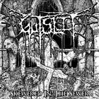 Skewered in the Sewer by Gutslit (CD, 2013, Ghastly Records)