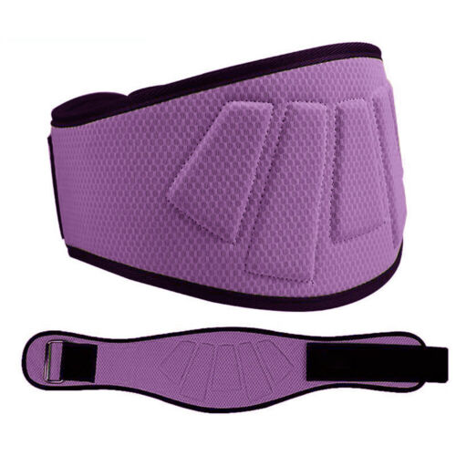 Weightlifting Belt Back Support Double-layer Strength Training ****