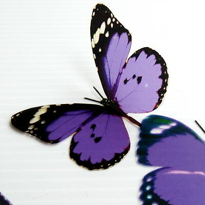 25 Pack of Purple Coloured 3D Artificial Butterflies