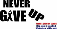 Vinyl Decal Sticker - Never Give Up Cancer Survivor 05 Car Truck Bumper Fun 12