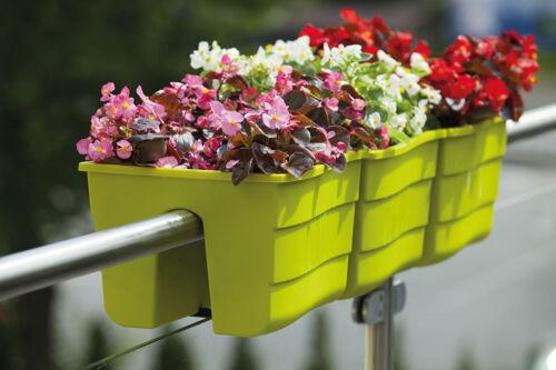 Balkonkasten Blumenkasten 30 cm 60 cm WAVE Türkis