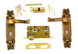 Dual Latch Door Panel Lock Indoor Room Stylish Handle Pull with Keys New