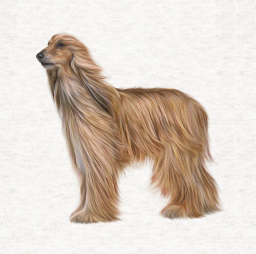 Dog Afghan Hound Fabric Craft Panels in 100/% Cotton or Polyester